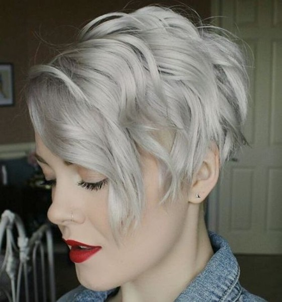15-ash-blond-pixie-bob